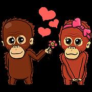 Otan the Orangutan