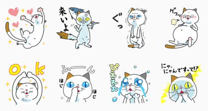 DHC Cat: Yoshiko Tamagawa