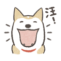 Shiba Inu (Shiba-Dog) Animated Stickers