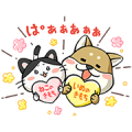 Pawsitively Pawesome Dogs & Cats: Shibataro and Hachiko 2 & 3