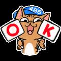 486 Shop × Grumpy aChiu Meow's Daily Life