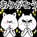 Attractive eye's cat x Otosan
