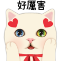 Choo Choo Cat: Look at Me