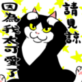 A Little Fat Cat Animation: Healing