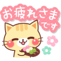 Free A lot of cats. LINE sticker for WhatsApp