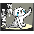 Intense Cat Part 8 Sticker for LINE & WhatsApp | ZIP: GIF & PNG