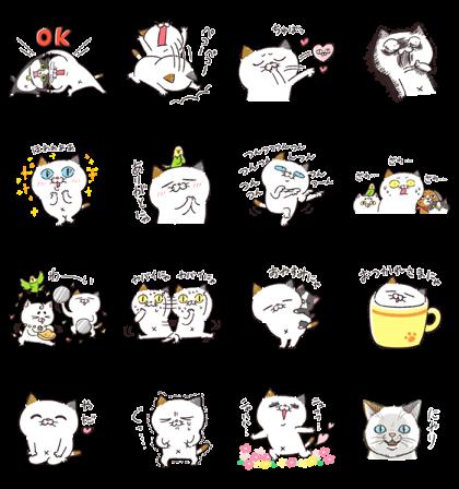 Download Yoshiko Tamagawa: 17th Free Set! Sticker LINE and use on WhatsApp