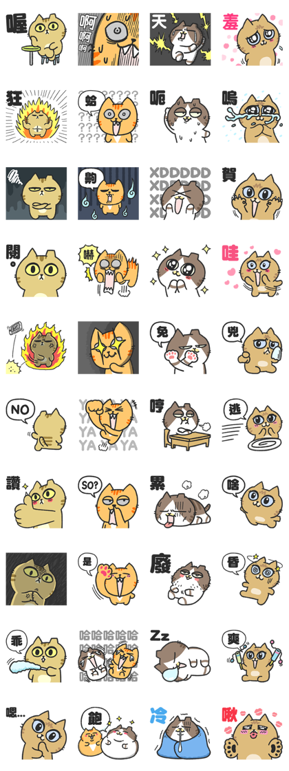Practical word of Sinko's cats Line Sticker GIF & PNG Pack: Animated & Transparent No Background | WhatsApp Sticker