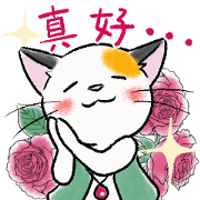 Tortoiseshell Cat Mitch Sticker for LINE & WhatsApp | ZIP: GIF & PNG