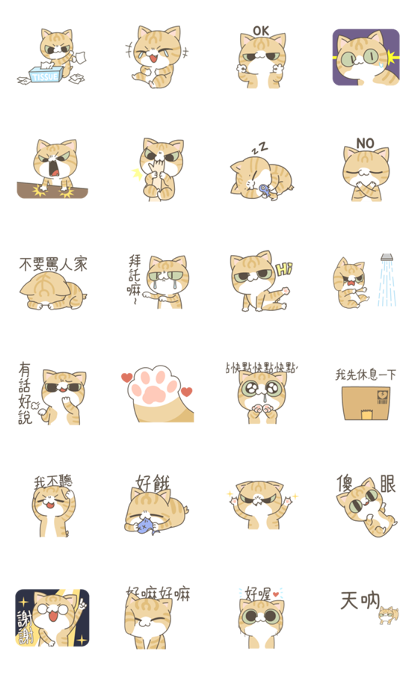 Ari the Cat's here – surrender, Human! Line Sticker GIF & PNG Pack: Animated & Transparent No Background | WhatsApp Sticker
