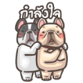 French Bulldog PIGU-Animated Sticker V Sticker for LINE & WhatsApp | ZIP: GIF & PNG