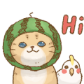 Cat's LifeStyle: Summer Edition Sticker for LINE & WhatsApp | ZIP: GIF & PNG
