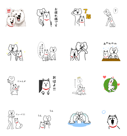 Aggressive Bear Betakkuma × Otosan Line Sticker GIF & PNG Pack: Animated & Transparent No Background | WhatsApp Sticker