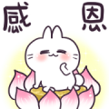 Cute Rabbit - Say Hi! Sticker for LINE & WhatsApp | ZIP: GIF & PNG