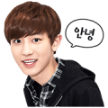 EXO CHAN YEOL Special Sticker for LINE & WhatsApp | ZIP: GIF & PNG