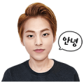 EXO XIUMIN Special Sticker for LINE & WhatsApp | ZIP: GIF & PNG