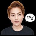 EXO XIUMIN Special