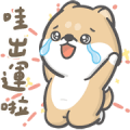 Hi John & Shiba Live Show Sticker for LINE & WhatsApp | ZIP: GIF & PNG