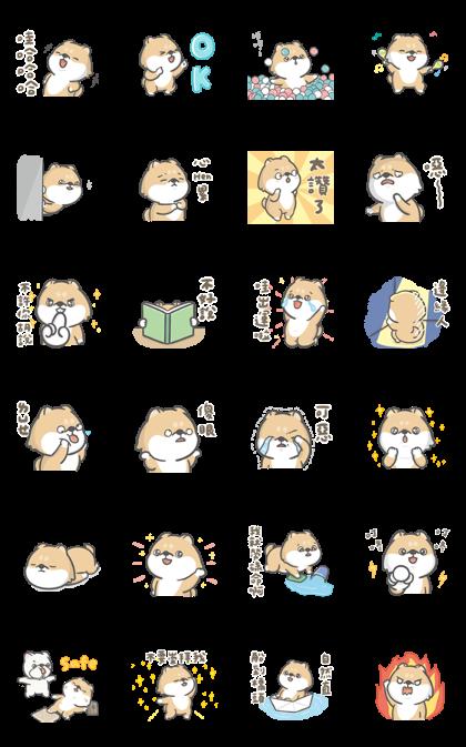 Hi John & Shiba Live Show Line Sticker GIF & PNG Pack: Animated & Transparent No Background | WhatsApp Sticker