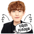 """K-Pop Star """"EXO"""" - Stickers for Cambodia Sticker for LINE & WhatsApp 