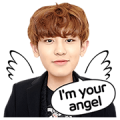 LINE Drama: EXO Next Door Special I Sticker for LINE & WhatsApp | ZIP: GIF & PNG