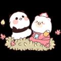 YURURIN PANDA × KUMAHON
