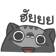 SLID CATS Sticker for LINE & WhatsApp | ZIP: GIF & PNG