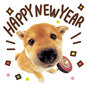 THE DOG New Year's Greetings Sticker for LINE & WhatsApp | ZIP: GIF & PNG