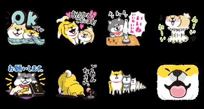 LINE STICKERS PREMIUM × SHIBANBAN Line Sticker GIF & PNG Pack: Animated & Transparent No Background | WhatsApp Sticker