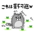 Plump Cat x LINE Blog Sticker for LINE & WhatsApp | ZIP: GIF & PNG