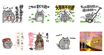Plump Cat x LINE Blog Line Sticker GIF & PNG Pack: Animated & Transparent No Background | WhatsApp Sticker