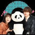 Panda Judges the World Sticker for LINE & WhatsApp | ZIP: GIF & PNG