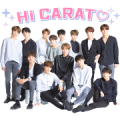 SEVENTEEN Sticker for LINE & WhatsApp | ZIP: GIF & PNG