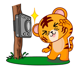 Tiggy Tiger WWF Sticker for LINE & WhatsApp | ZIP: GIF & PNG