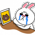 Cony: Special Edition Sticker for LINE & WhatsApp | ZIP: GIF & PNG