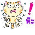 Cool Happy Cats: Be Happy Together Sticker for LINE & WhatsApp | ZIP: GIF & PNG