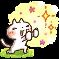 DoCLASSE × Simple white cat (SHIRONEKO)