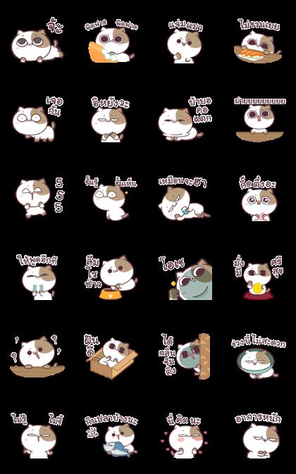Tofu cat Dukdik 3 Line Sticker GIF & PNG Pack: Animated & Transparent No Background | WhatsApp Sticker