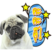 We are Lovely Pet: Animated with Sound Sticker for LINE & WhatsApp | ZIP: GIF & PNG