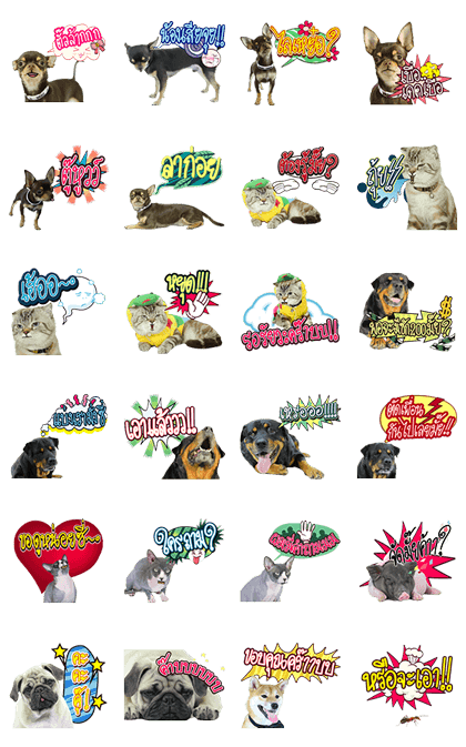 We are Lovely Pet: Animated with Sound Line Sticker GIF & PNG Pack: Animated & Transparent No Background | WhatsApp Sticker