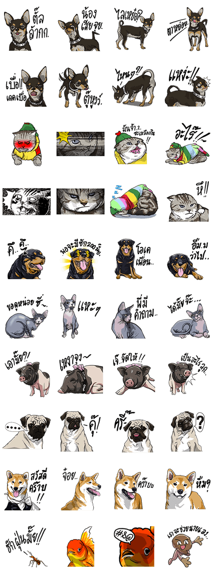 We are Lovely Pets Line Sticker GIF & PNG Pack: Animated & Transparent No Background | WhatsApp Sticker