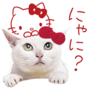 Anago-chan × Hello Kitty Sticker for LINE & WhatsApp | ZIP: GIF & PNG