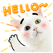 Bai-Ji Has Something to Say Sticker for LINE & WhatsApp | ZIP: GIF & PNG
