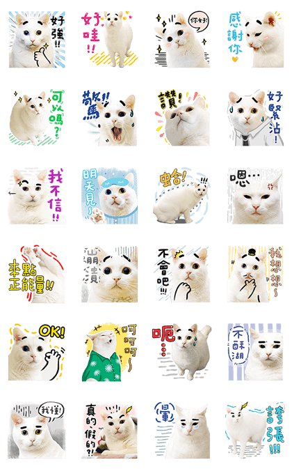 Bai-Ji Has Something to Say 2 Line Sticker GIF & PNG Pack: Animated & Transparent No Background | WhatsApp Sticker