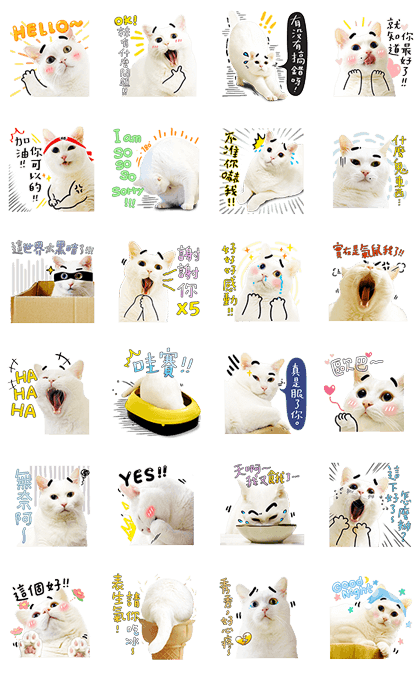 Bai-Ji Has Something to Say Line Sticker GIF & PNG Pack: Animated & Transparent No Background   WhatsApp Sticker