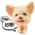 Cantonese Cat and Dog Stickers Sticker for LINE & WhatsApp | ZIP: GIF & PNG