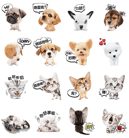 Cantonese Cat and Dog Stickers Line Sticker GIF & PNG Pack: Animated & Transparent No Background | WhatsApp Sticker