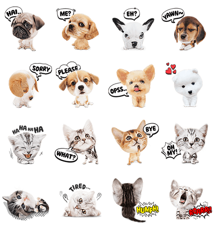 Cute Animals Stickers Line Sticker GIF & PNG Pack: Animated & Transparent No Background | WhatsApp Sticker