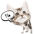Cute Pet Animals Sticker for LINE & WhatsApp | ZIP: GIF & PNG