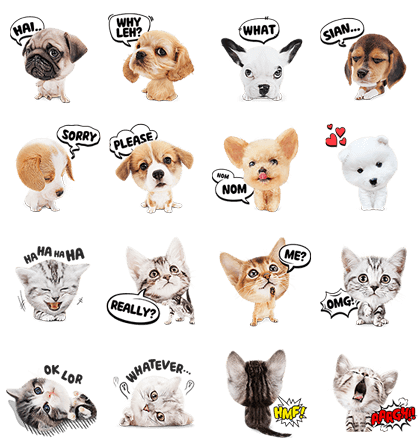 Kittens and Puppies! Line Sticker GIF & PNG Pack: Animated & Transparent No Background | WhatsApp Sticker